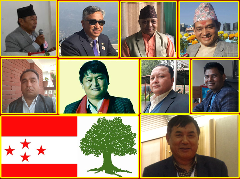 कांग्रेस १४ औं महाधिवेशनः सोलुखुम्बुमा ९ जना सभापतिको आकांक्षी